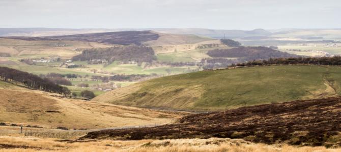 Axe Edge Moor